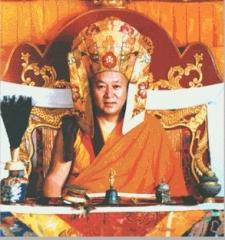 His Holiness the Drikung Kyabgon Chetsang